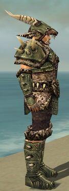 Warrior Elite Charr Hide Armor M gray side