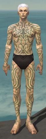 File:Necromancer Scar Pattern Armor M gray front.jpg