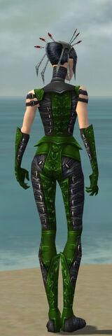 File:Necromancer Ascalon Armor F dyed back.jpg