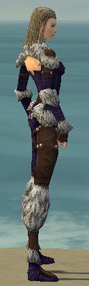File:Ranger Elite Fur-Lined Armor F dyed side.jpg
