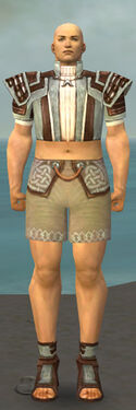 Monk Censor Armor M gray chest feet front