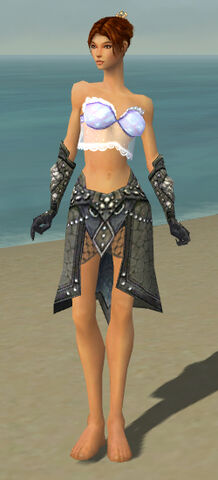 File:Elementalist Elite Stoneforged Armor F gray arms legs front.jpg