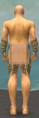 File:Monk Dragon Armor M gray arms legs back.jpg