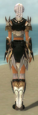 Paragon Norn Armor F dyed back