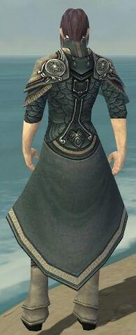 File:Elementalist Asuran Armor M gray chest feet back.jpg