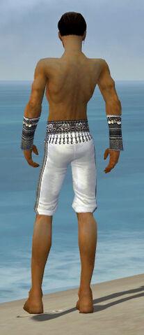 File:Elementalist Luxon Armor M gray arms legs back.jpg