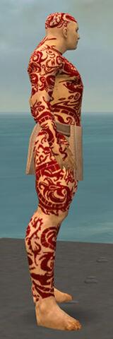 File:Monk Dragon Armor M dyed side.jpg