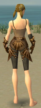 Ranger Sunspear Armor F gray arms legs back