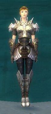 Warrior Deldrimor Armor F gray front