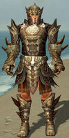 Warrior Monument Armor M gray front