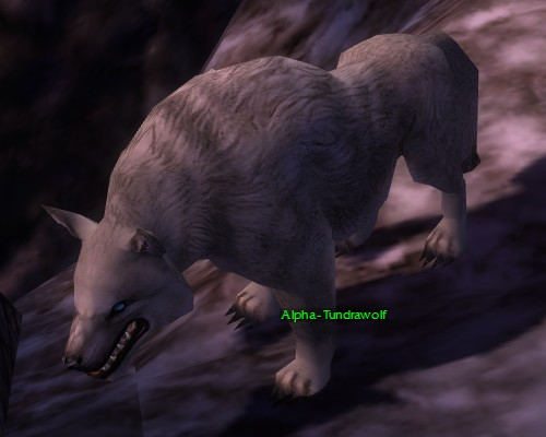 File:Alpha Tundra Wolf.jpg