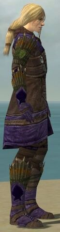 File:Ranger Elite Druid Armor M dyed side.jpg