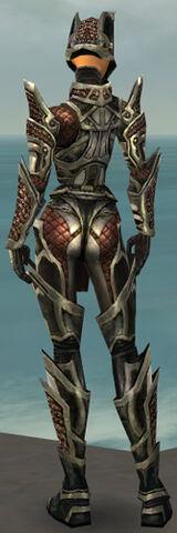File:Warrior Elite Kurzick Armor F gray back.jpg