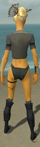 File:Assassin Shing Jea Armor F gray chest feet back.jpg