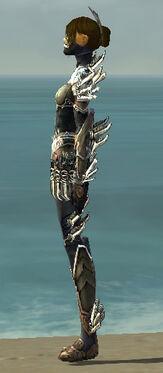 Assassin Asuran Armor F gray side