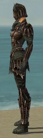 File:Warrior Elite Dragon Armor F gray side.jpg
