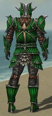 Warrior Wyvern Armor M dyed back