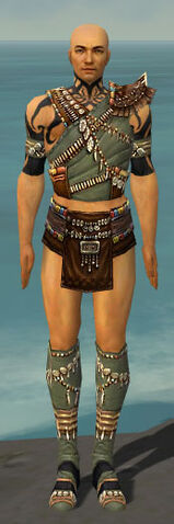 File:Ritualist Imperial Armor M gray chest feet front.jpg