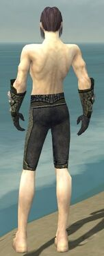 Elementalist Elite Stoneforged Armor M gray arms legs back
