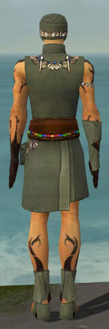 File:Ritualist Shing Jea Armor M gray back.jpg
