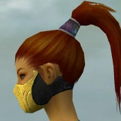 File:Assassin Kurzick Armor F dyed head side.jpg