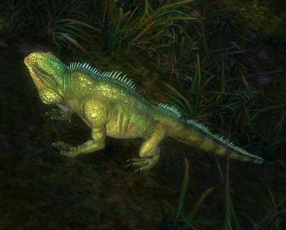 File:Iguana.jpg