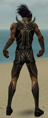 File:Necromancer Istani Armor M gray back.jpg