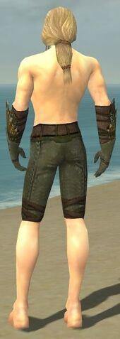 File:Ranger Elite Druid Armor M gray arms legs back.jpg