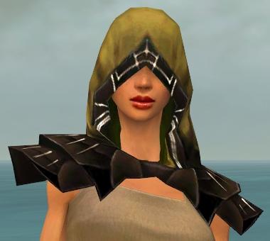 File:Dervish Primeval Armor F dyed head front.jpg