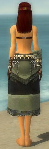 File:Ritualist Luxon Armor F gray arms legs back.jpg