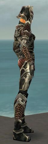 File:Warrior Elite Kurzick Armor F gray side.jpg