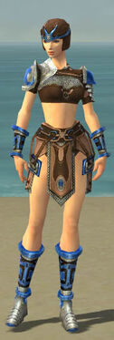 Warrior Gladiator Armor F dyed front