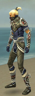 Assassin Norn Armor M gray side