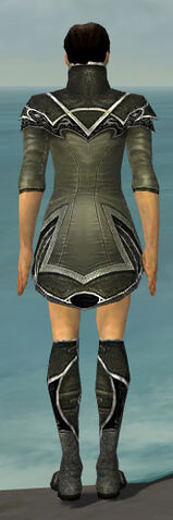 File:Elementalist Shing Jea Armor M gray chest feet back.jpg