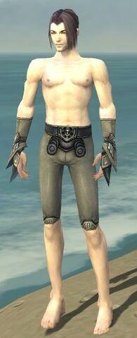 File:Elementalist Asuran Armor M gray arms legs front.jpg
