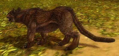 File:Melandru's Stalker.jpg