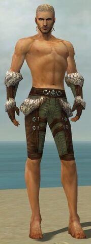 File:Ranger Elite Fur-Lined Armor M gray arms legs front.jpg