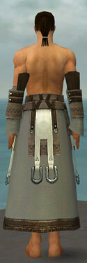 Dervish Elonian Armor M gray arms legs back