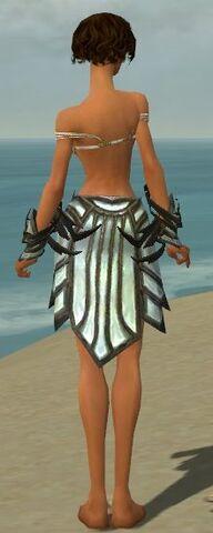 File:Paragon Primeval Armor F gray arms legs back.jpg