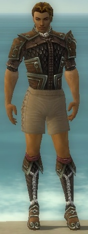 File:Ranger Elite Canthan Armor M gray chest feet front.jpg