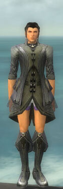 Elementalist Kurzick Armor M gray chest feet front