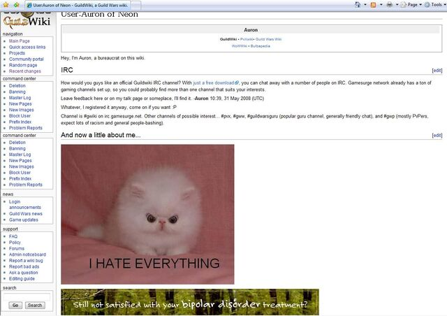 File:Perfect advertisement.jpg