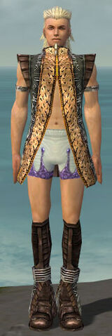 File:Elementalist Istani Armor M gray chest feet front.jpg