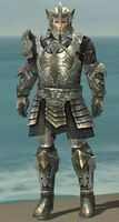 Warrior Elite Templar Armor M gray front