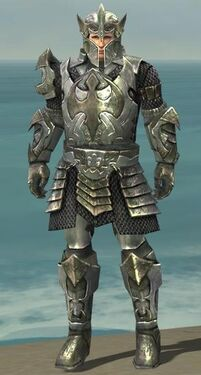 Warrior Elite Templar Armor M gray front