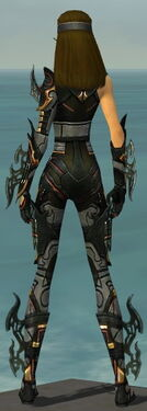 Assassin Elite Kurzick Armor F gray back