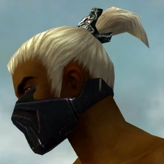 File:Assassin Obsidian Armor M dyed head side.jpg