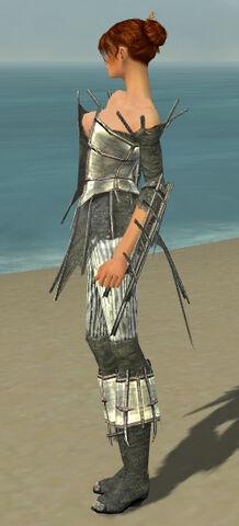 File:Elementalist Primeval Armor F gray side.jpg