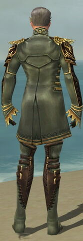 File:Mesmer Vabbian Armor M gray back.jpg
