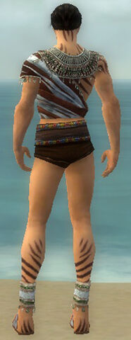 File:Ritualist Exotic Armor M gray chest feet back.jpg